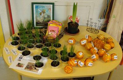 Mati res d 39 cole projet classe jardins un petit jardin for Le jardin voyageur maternelle